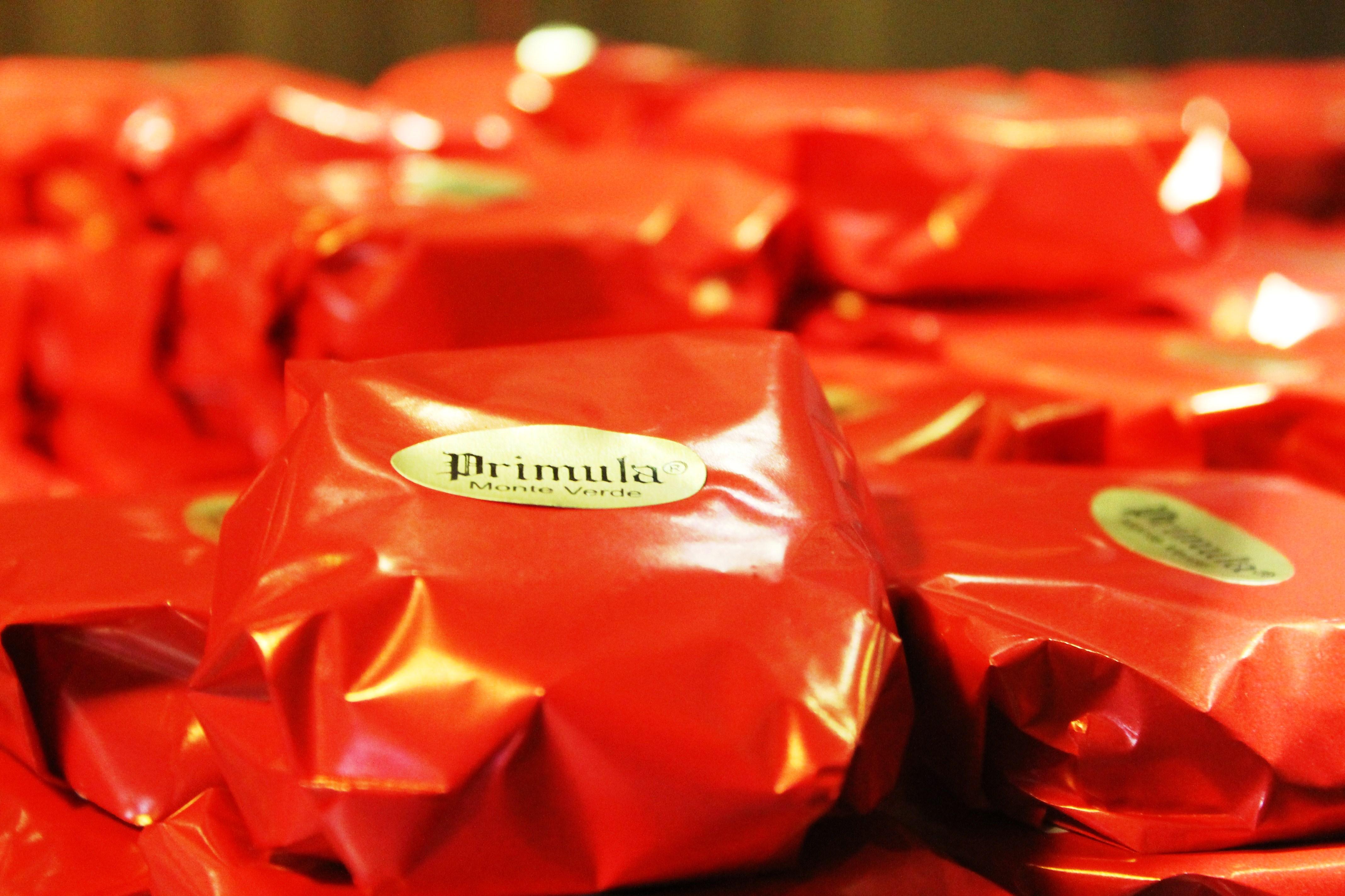 Fábrica de Chocolate - Prímula - Crédito Demétrio César Xavier