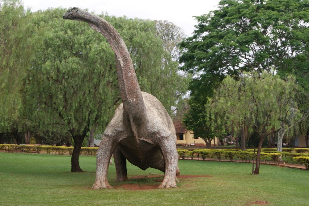 museu-paleontologia_peiropolis