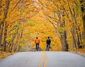 Boys Biking on Highway at FDR State Park