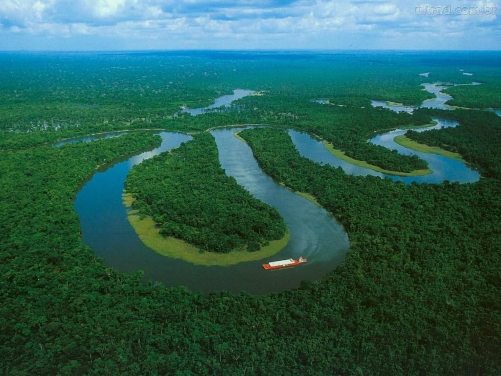 275371_Papel-de-Parede-Rio-Amazonas_1400x1050-1024x768 (1)