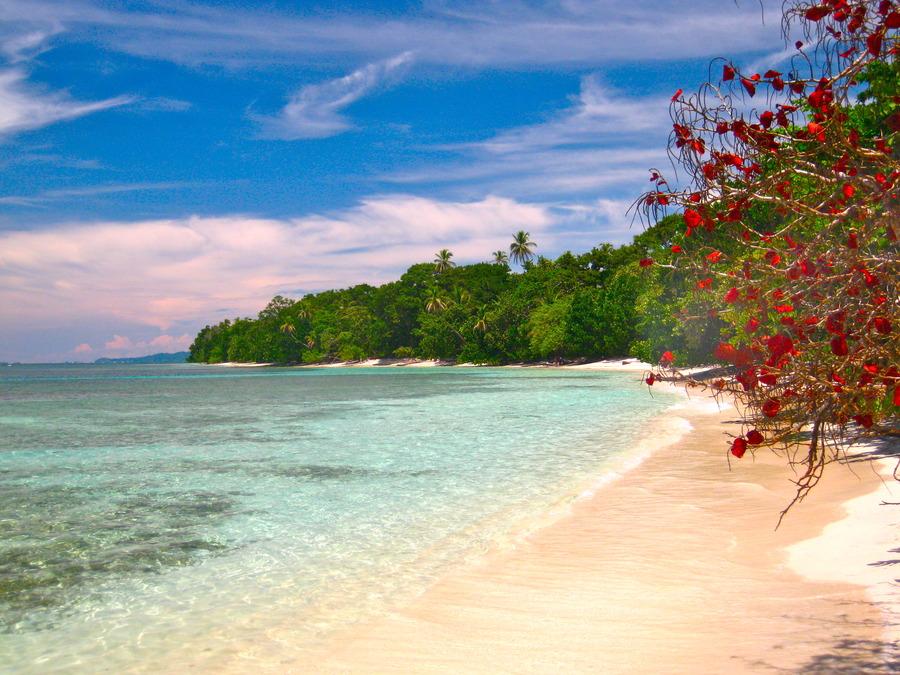 Red Frog Beach Island Resort Certified For Its: Praias Deslumbrantes No PanamáQual Viagem