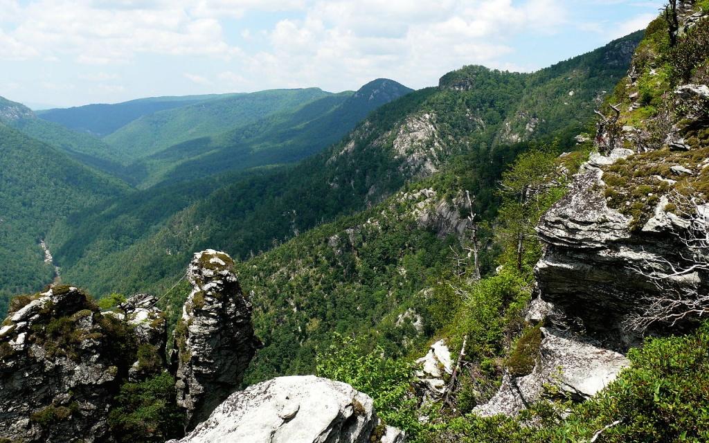 Pisgah National Forest jogos vorazes commons