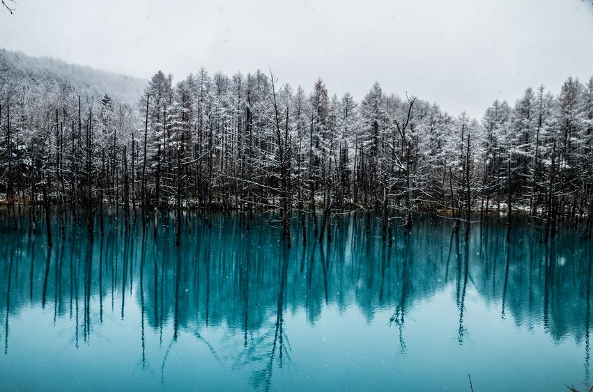 Foto por IStock/ zhnger