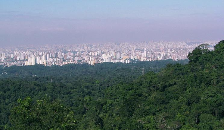 3_parque_da_cantareira_c