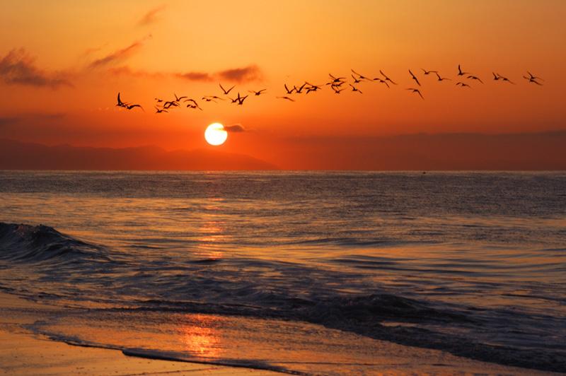 Sunrise along the Coast