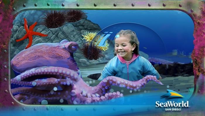 Ocean Explorer - Octopus