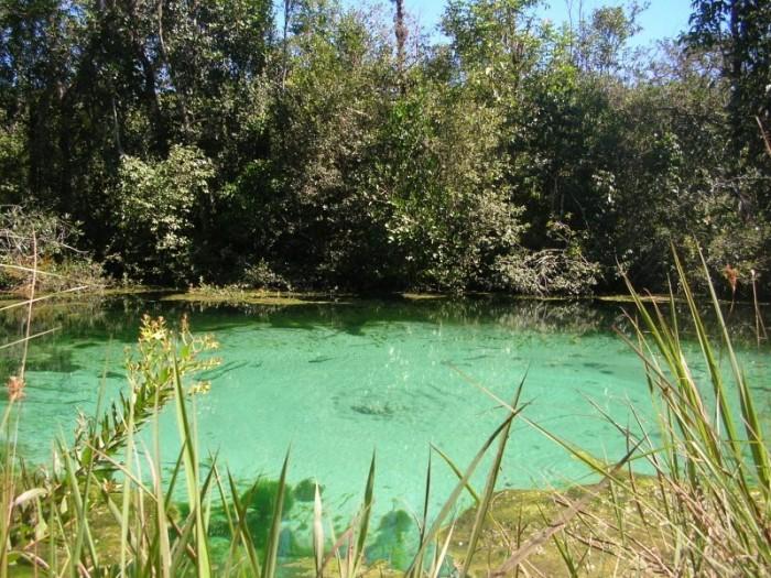 lagoas 1