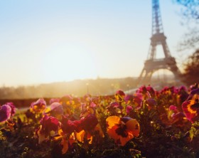 spring in europe, Eiffel tower unusual view, Paris, France