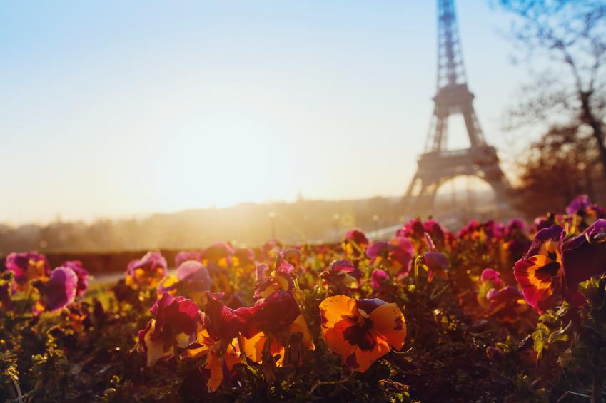 spring in europe, Eiffel tower unusual view, Paris, France