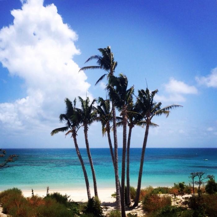 lizard island resort 1