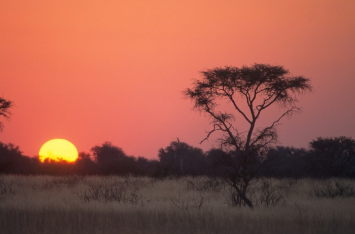 the red circle of the sun go down in the central kalahari game reserve - BOtswana