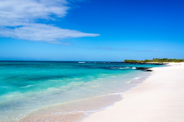 Pristine white Bacha Beach on Santa Cruz in the Galapagos Islands in Ecuador