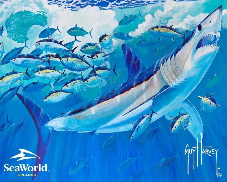 SeaWorld_Guy Harvey_MAKO MURAL