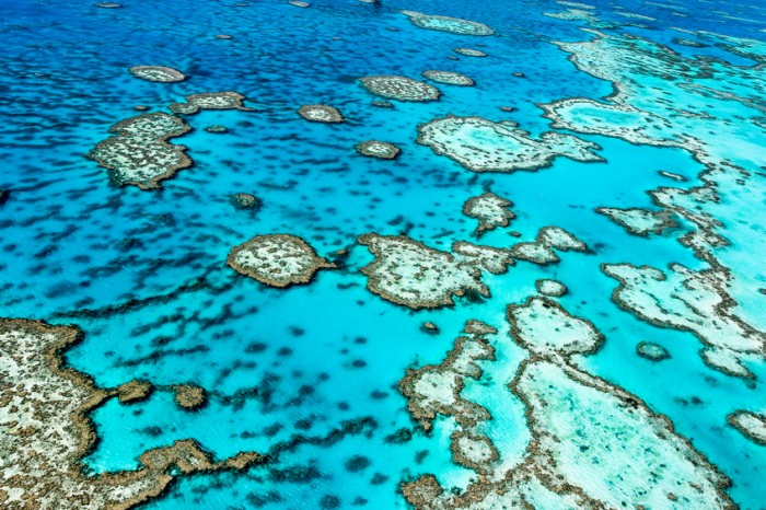 The Great Barrier Reef in north Queensland,Australia.