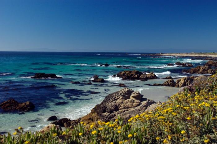 17 Mile Drive, Monterey, CA.