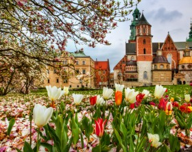 From Wawel Hill, Krakow