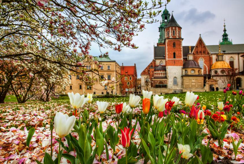 From Wawel Hill, Krakow