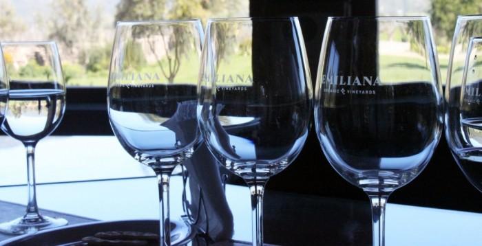 vinicola-emiliana-2