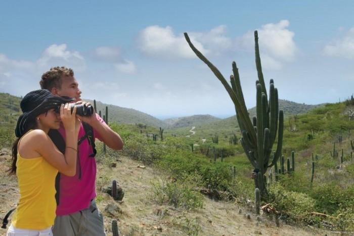1 - Cactos no Parque Nacional Arikok 2_Credito_ATA