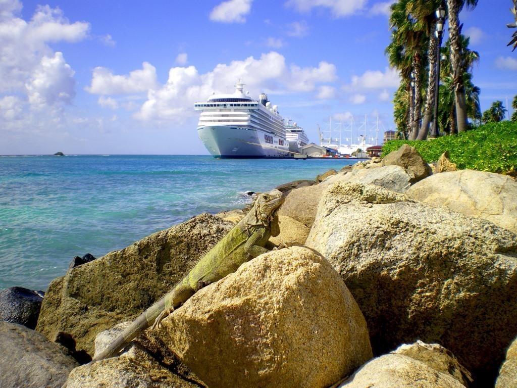 2 - Iguana em Aruba perto de navio de cruzeiro_Credito_ATA