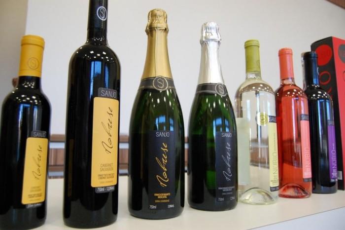 Sanjo vinhos 2 - Patrícia Chemin