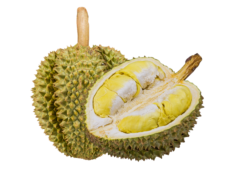 Durian smelly and tasty fruit from Thailand Asia