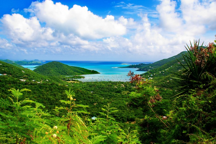 Overlooking the luscious green flora and rolling hills of the island of St. John, US Virgin Islands onto the myriad of blues, turquoise and aqua of the Caribbean Sea under a sky of cumulus clouds.