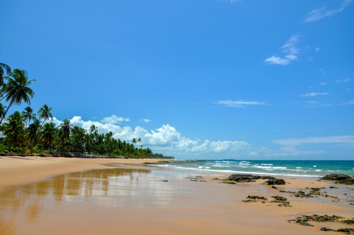 Brazil, Bahia, Taipu de Fora, Beach at low tide with cliffs and palms in background