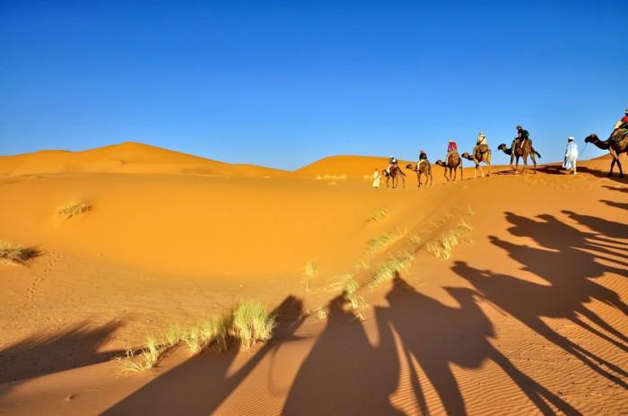 Merzouga, Morocco - October 1, 2013: Tourist group on Camels in Merzouga desert