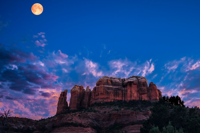 View to a red rock formation in the background and trees, bushes and cactuses in the foreground. Location is near Sedona, Arizona. Cathedral Rock Twilight.