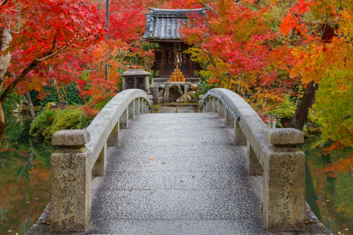 Kyoto, Japan - November 22 2015: Eikando (View of Eternity Hall) Zenrinji (Temple of Forest of Zen), founded in 853, houses a famous Amida statue which a Japanese important Cultural Property