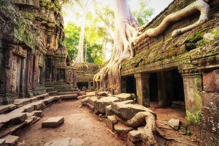 Angkor Wat Cambodia. Ta Prohm Khmer ancient Buddhist temple in jungle forest. Famous landmark, place of worship and popular tourist travel destination in Asia.