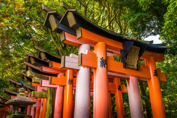 Fushimi Inari Taisha Shrine, Kyoto, Japan - November 8, 2013: A long row of Torii gates at Fushimi Inari Taisha Shrine. Fushimi Inari Taisha is a shinto shrine located in Southern Kyoto, Japan. It features thousands of red torii gates and is a favorite destination among tourists.