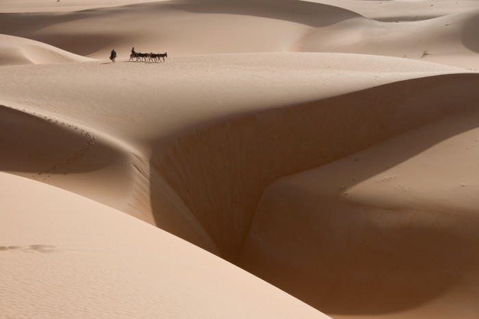 a donkey caravan is tiny on the dunes of the sahara desert, with a large chasm of sand near by.