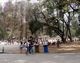 São Paulo, São Paulo, Brazil - August 16, 2015: view of playground in Horto Florestal in São Paulo city, with children playing under the supervision of parents.