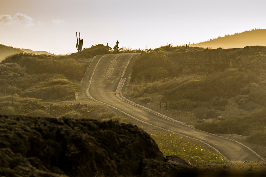 Road going uphill at Arikok National Park, Aruba, Caribbean, with a cactus on the top and some vegetation. Photograph taken at sunset.