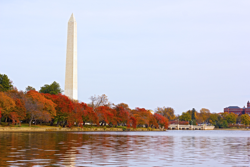 A peaceful fall afternoon near the water of Tidal Basin in Washington DC.