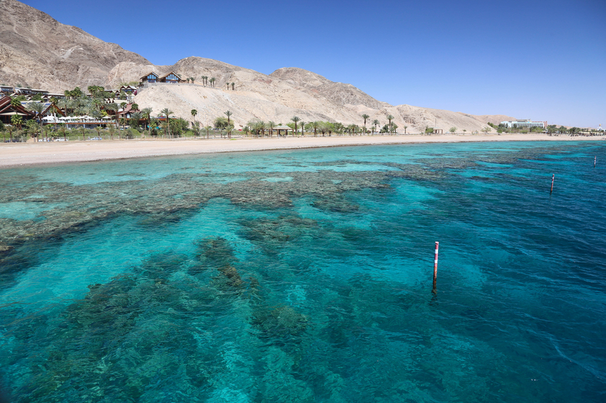 Photo of the Red Sea and Coral Reef.