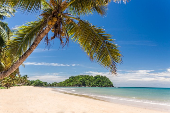 Beautiful tropical sandy beach, seascape with palm trees