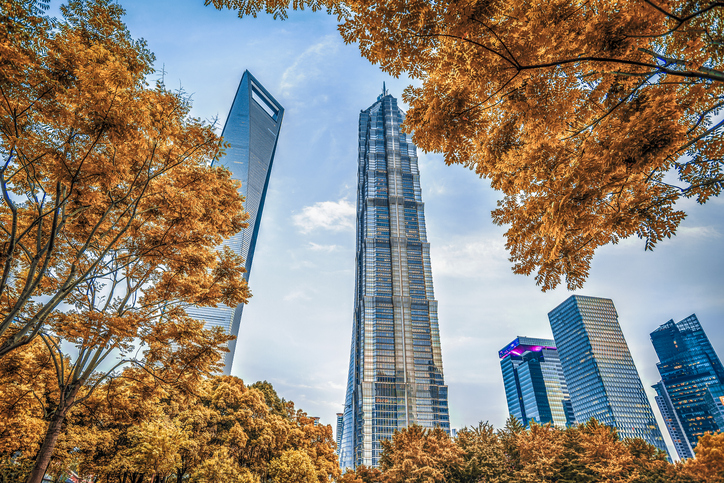 View of Shanghai Lujiazui Financial District in Autumn with yellow leaves.