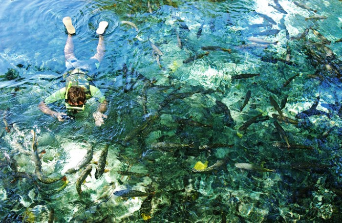 Bonito, Brazil - July 3, 2003: Tourist on underwater observation activity in Natural Aquarium at Bonito, Mato Grosso state, Brazil