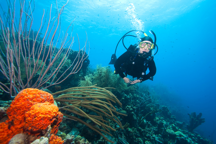 Scuba diver swimming over coral reef near Bonaire, Netherlands Antilles