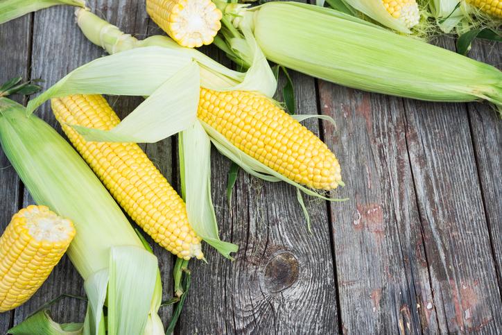 Fresh Corn on wooden table