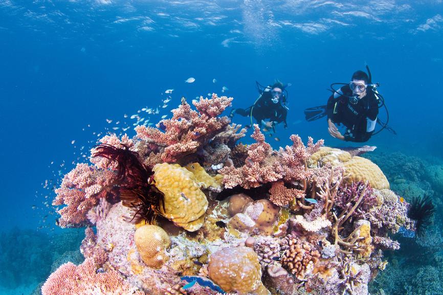 Foto por Tourism Whitsundays