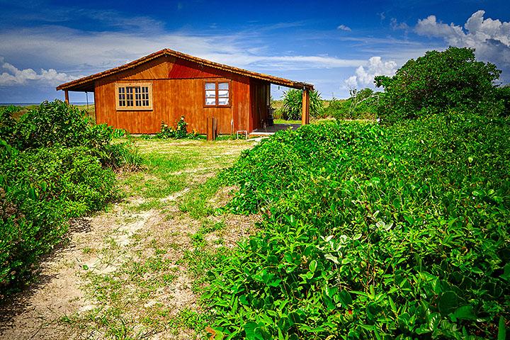ilha-do-cardoso-alf-ribeiro