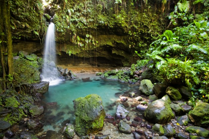 Tropical waterfall and turquoise pool in lush forest