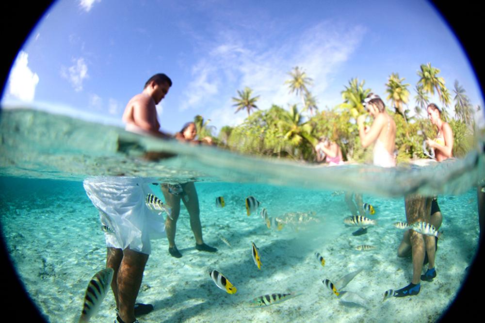 Observar a vida marinha é outra atividade que as crianças vão adorar na Polinésia Francesa