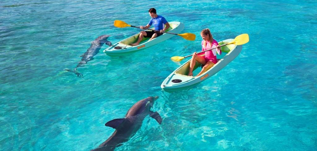 thingstodo_dolphincay_kayak_hero