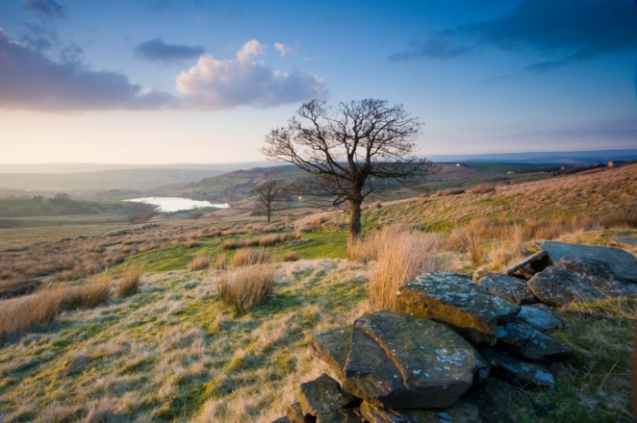 Taken in early Spring this is a view over Yorkshire Dales moorland near to the village of Haworth in West Yorkshire, in the foreground is a classic dry stone wall and in the distance one of many local reservoirs.