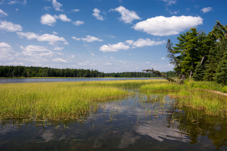 Lake Itasca in Itasca State Park, Northern Minnesota, USA.